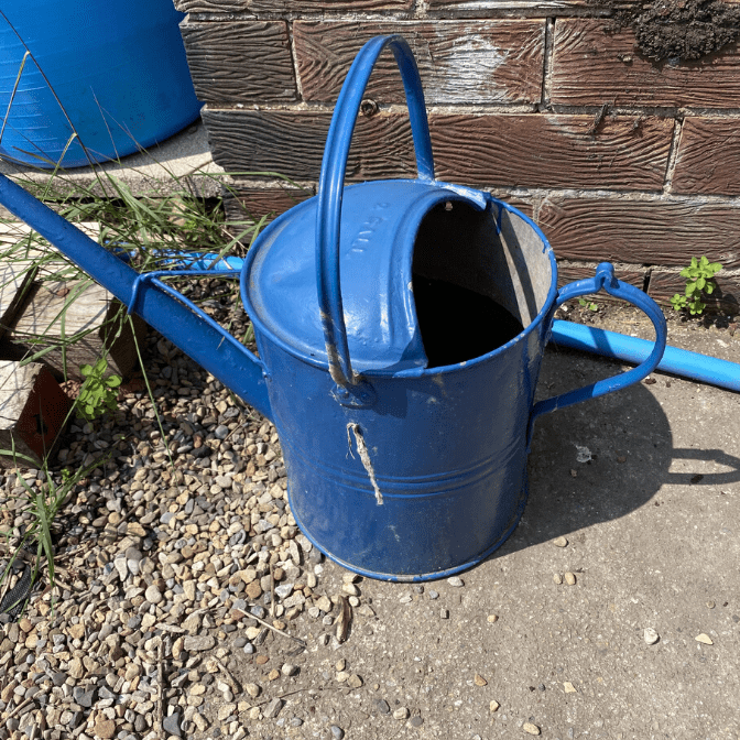 thrifted blue metal watering can