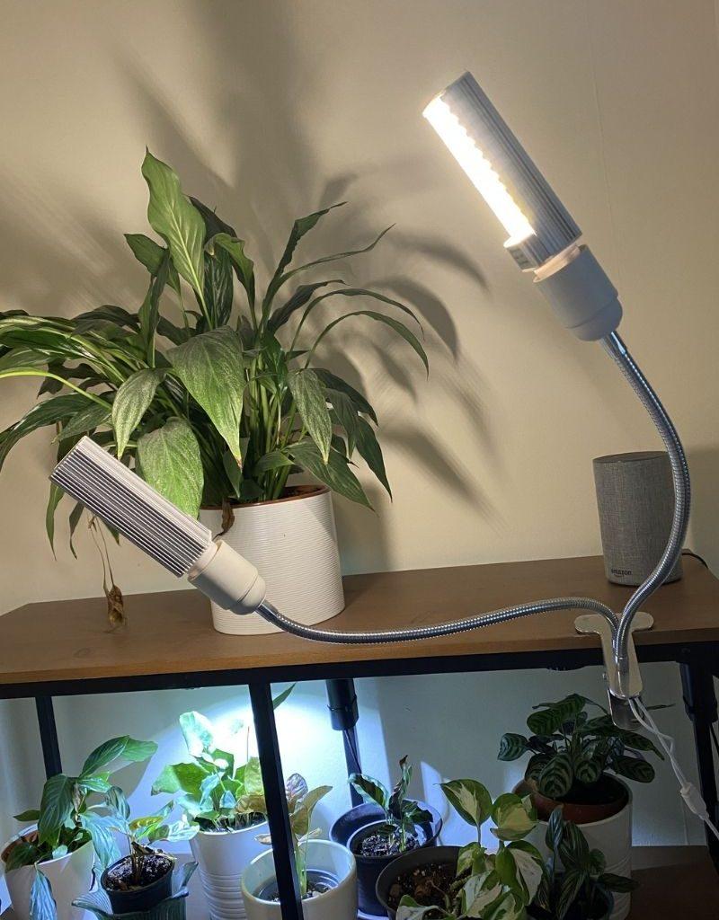 cheap amazon grow light